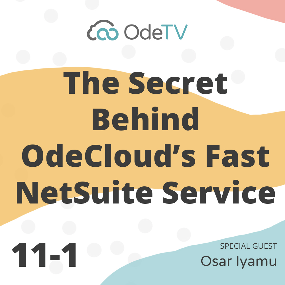fast NetSuite services